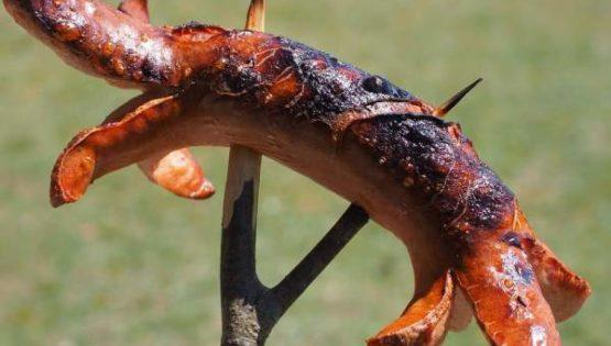 Évite de manger la viande carbonisée du barbecue, c'est dangereux pour ta santé.