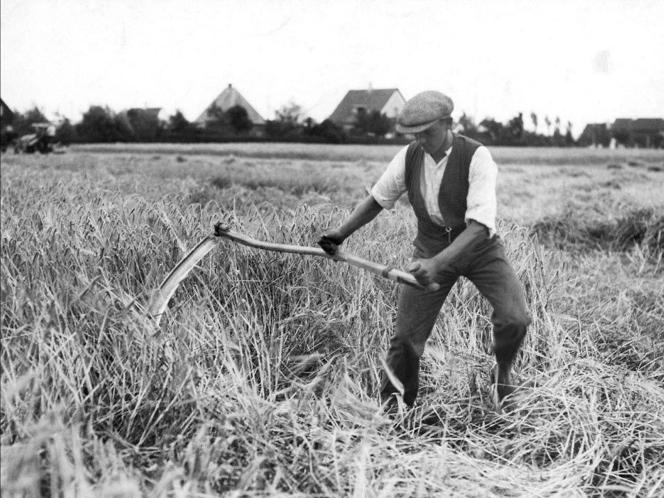 Si notre agriculture ne s'était pas tant industrialisée, l'alimentation ne serait probablement pas un sujet si enflammé.