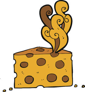 Tu peux manger des fromages bien affinés car ils contiennent moins de lactose, enfin si l'odeur ne te fait pas peur !
